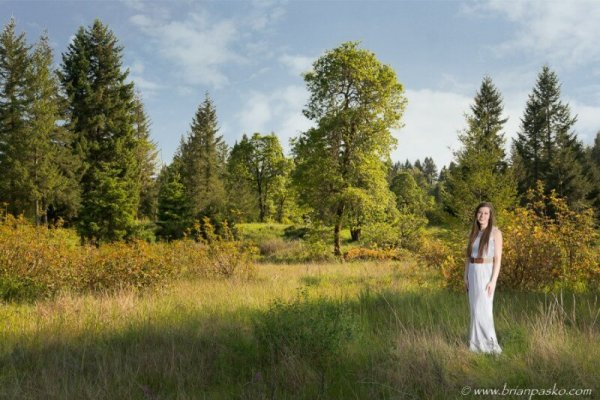 Portrait of a woman in a white dress picture with a lone tree in spring.