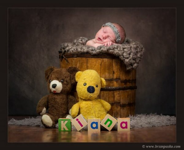 Portrait of a newborn baby sleeping in a bucket picture with two stuffed teddy bears and wooden blocks.
