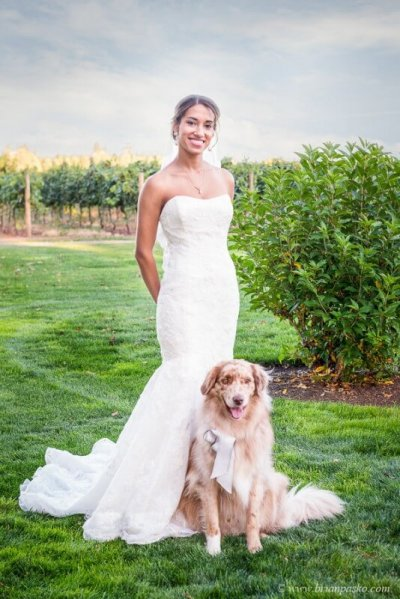Portrait of beautiful bride in wedding dress with her dog beautiful picture at Postalwaits country wedding venue in Canby Oregon.