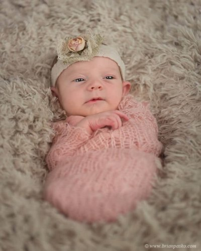 Portrait of a newborn baby wrapped in pink pictured with antique white headband with rose.