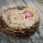 Portrait of a sleeping newborn baby posed in a nest with a yellow knit hat.