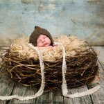 Newborn baby portrait sleeping with pictyre in a brown knit hat and bird nest.