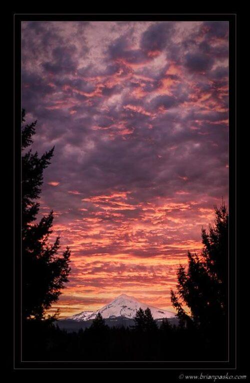 Fine art landscape photograph of Mount Hood at sunrise from Boring, Oregon.
