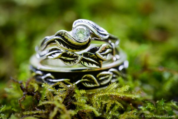 Elegant and detailed wedding rings sitting in moss at Wahclella Waterfall wedding in the Columbia River Gorge.