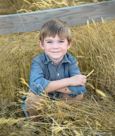 Six year old boy sitting in golden field by fence at Powell Butte Nature Park in Portland, Oregon.